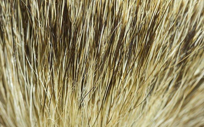 Rasierpinsel aus Dachshaar stinkt - Was tun? Gibt es Alternativen?