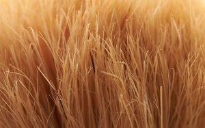 Rasierpinsel verliert Haare - Woran liegt das?